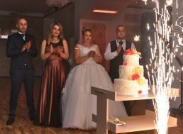 fotogorafie cu aducerea tortului la nunta